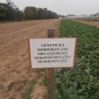 Piešťanskí aktivisti odhaľujú činnosť firmy Monsanto na Slovensku!
