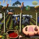Ako si Monsanto privlastňuje úspechy dlhoročne šľachtených rastlín