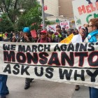 STRACH vs. MONSANTO